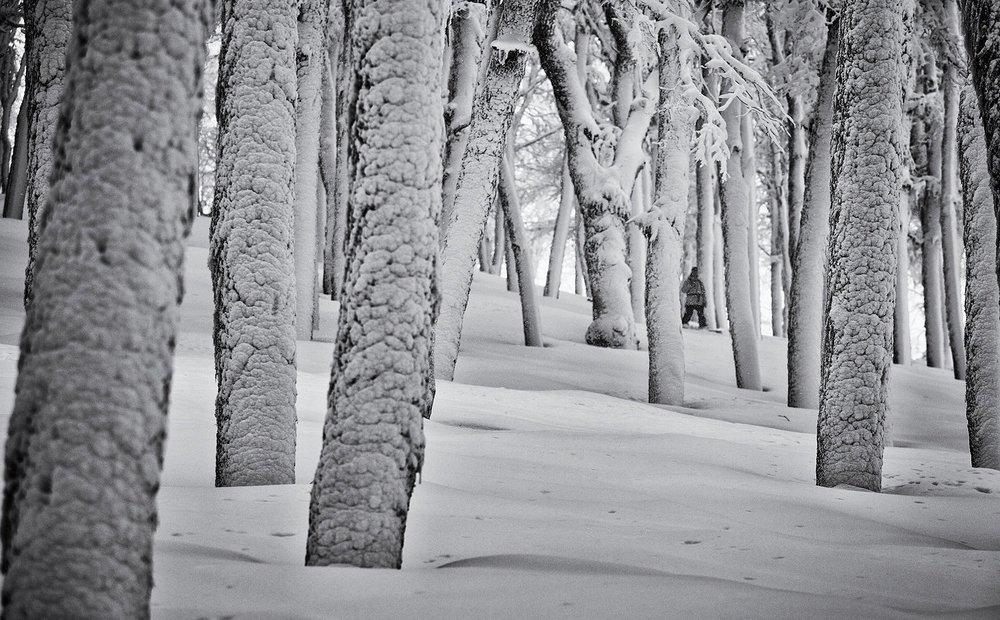 Landscape_Patagonia_byRohrbacher15_203.jpg