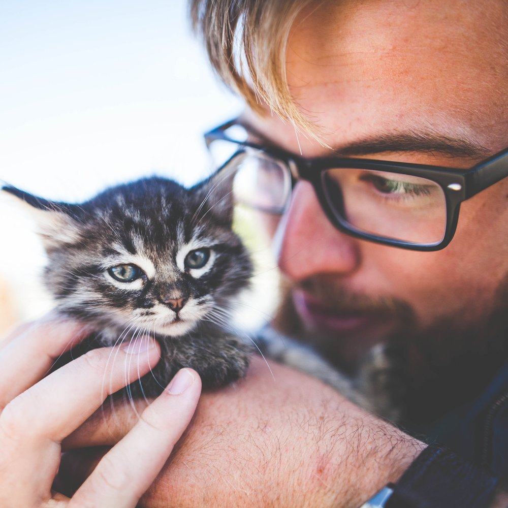 kitten and owner