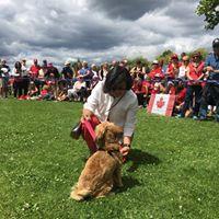Dog show 2018 -20.jpg