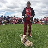 Dog show 2018 -32.jpg