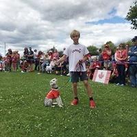 Dog show 2018 -29.jpg