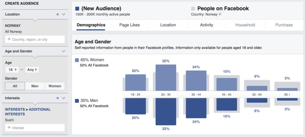 facebook segment