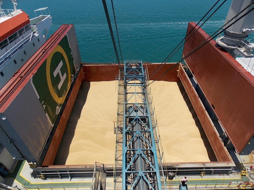 Fijian unrefined sugar being loaded in bulk for shipment to Europe