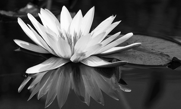 mindfulness-stones.jpg