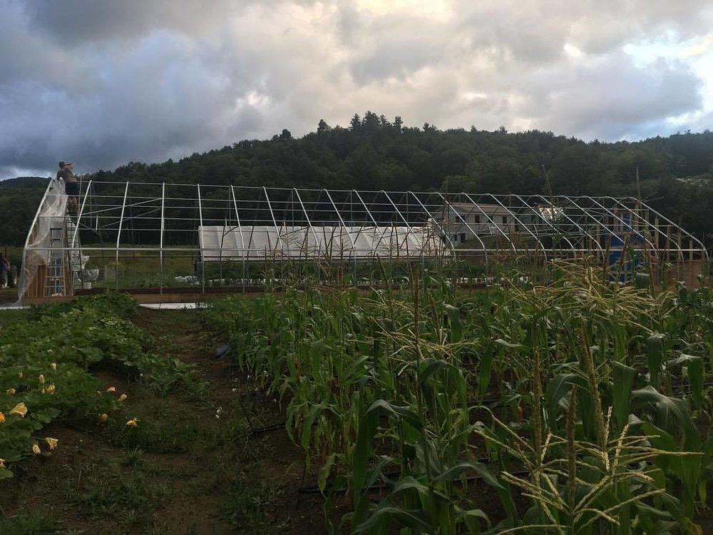 Long Winter Farm - Ledgewood Frame