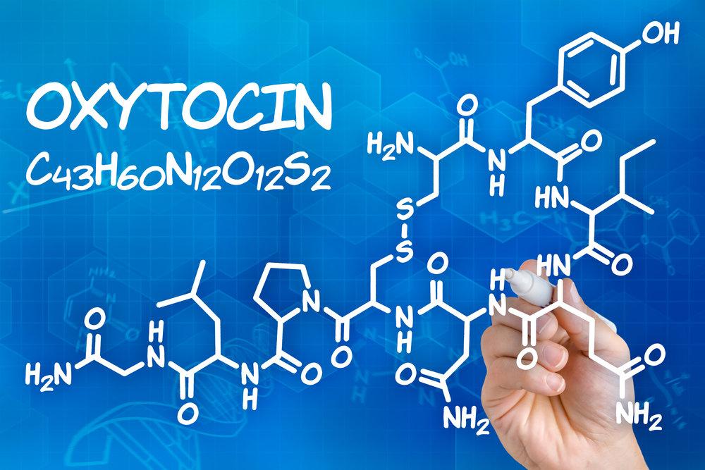 Oxytocin hormone.jpeg