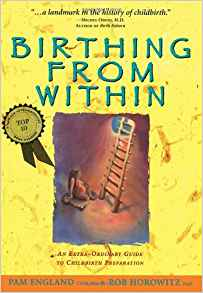 Birthing from Within  Kindle , Hardcover or paperback By pam England, Rob Horowitz Ph.D.