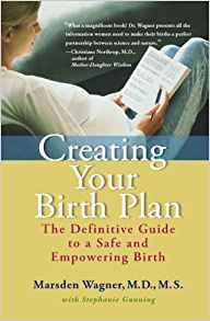 Creating your birth plan - the definitive guide to a safe and empowering birth Paperback By Marsden Wagner