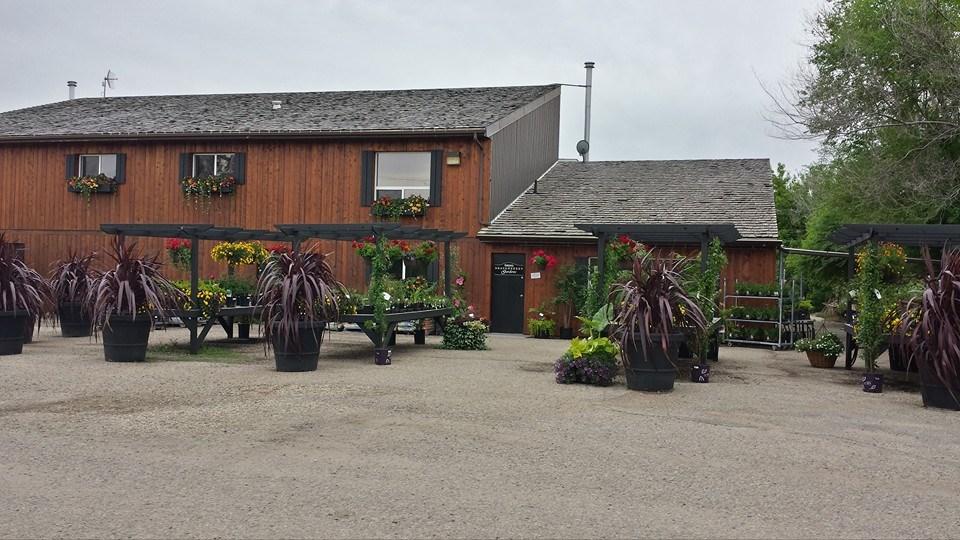 Zak Stebner - greenhouse front.jpg
