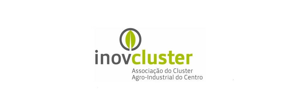 inov-_cluster.jpg