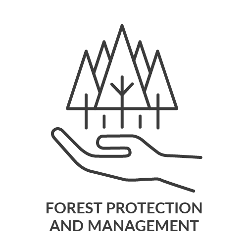 Forest protection and management .png