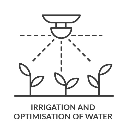 Irrigation+and+optimisation+of+water.jpg