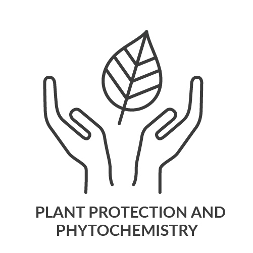Plant+Protection+and+Phytochemistry.jpg