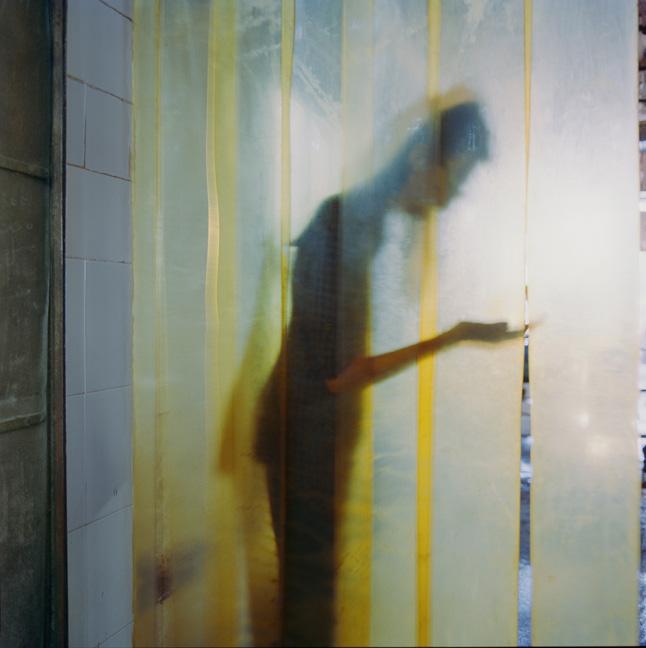 14.yellow.jpg