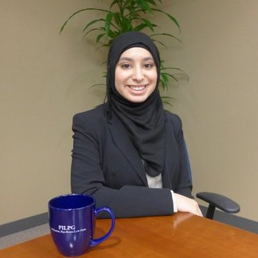 Nuha E. Muntasser  University of Massachusetts  LinkedIn