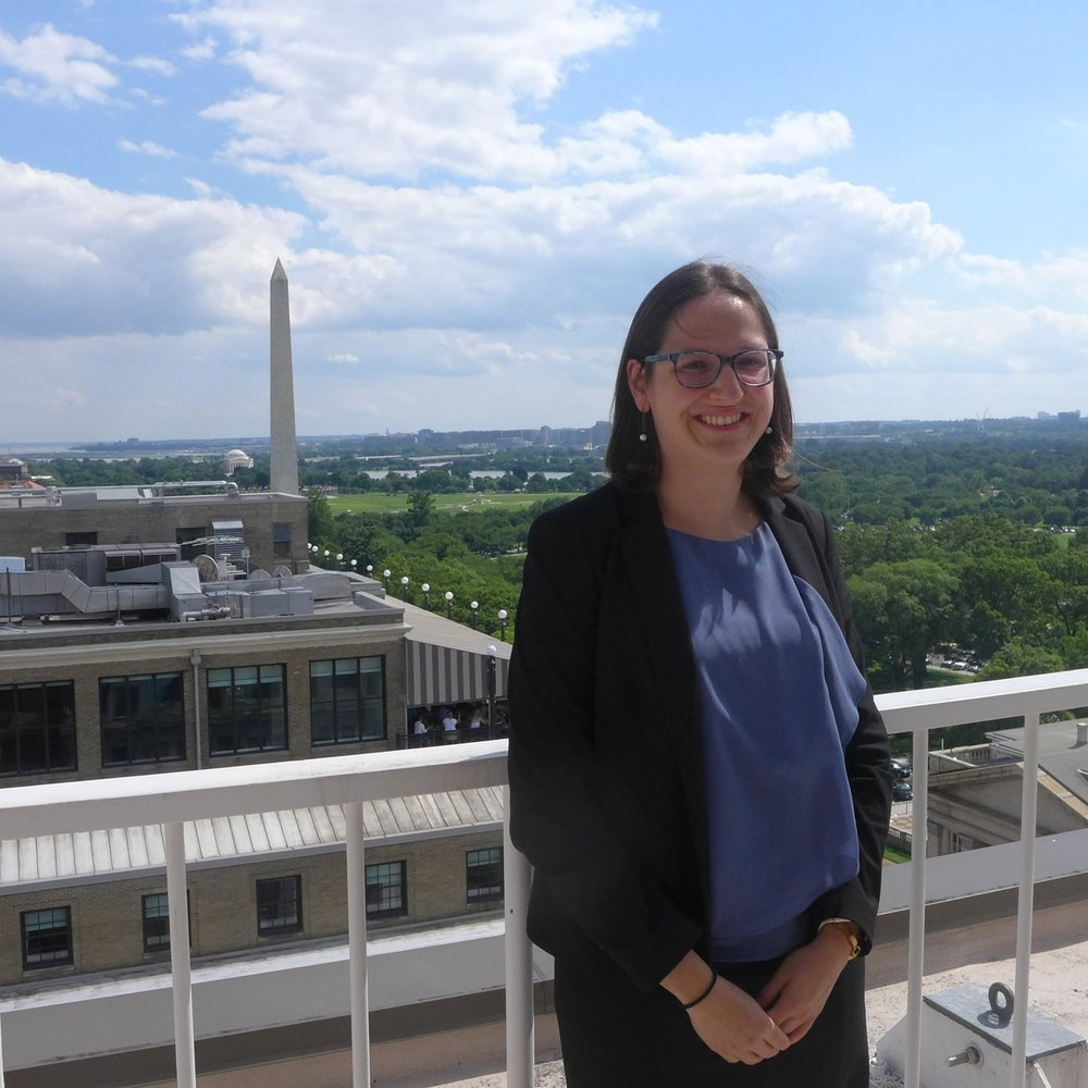 Allie Brudney  Harvard Law School  LinkedIn