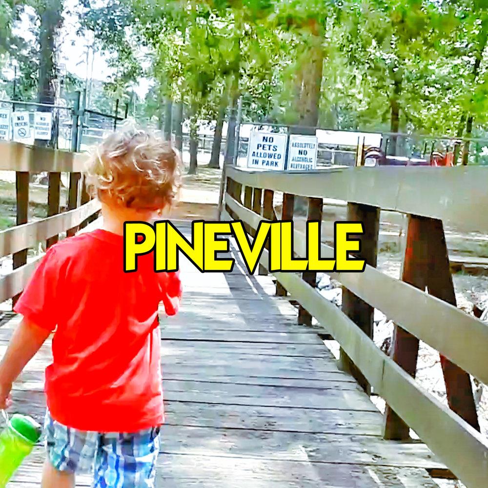 pineville.jpg