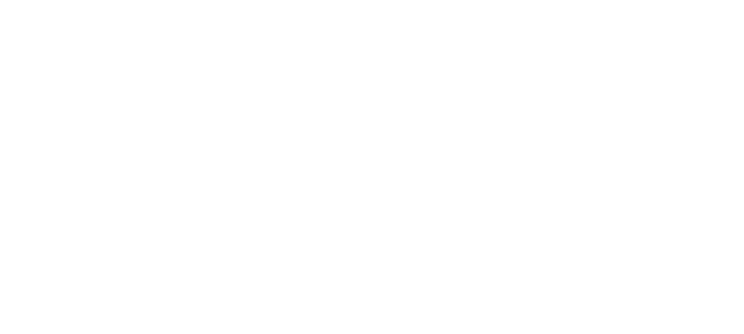 The Travel Vlog Family