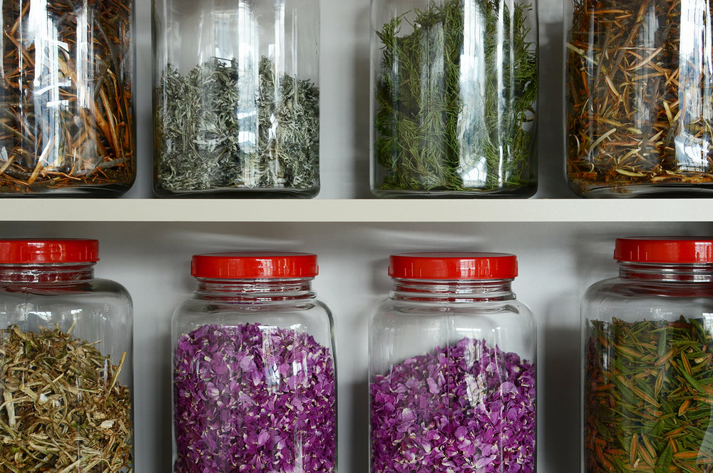 What Wolfe collects during her patrols, she brings back to the Learning Centre in Carcross. Her floor-to-ceiling shelf is filled with jars of red elder, caribou leaves, rose petals, Hudson's Bay tea and more.