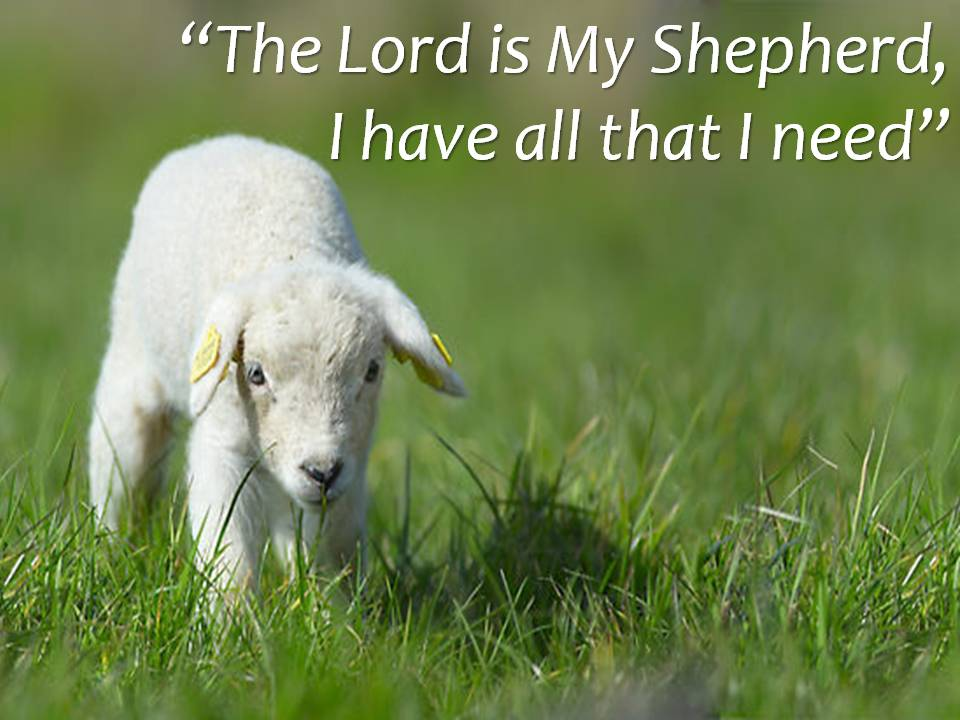 the-shepherd-sermon.jpg