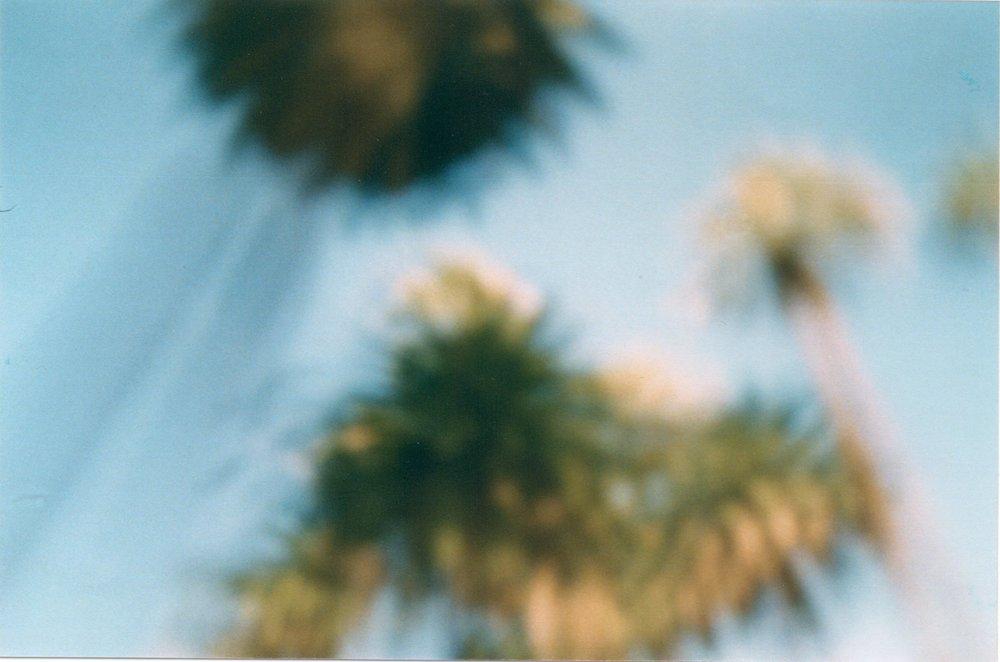 Scan_Pic0012.jpg