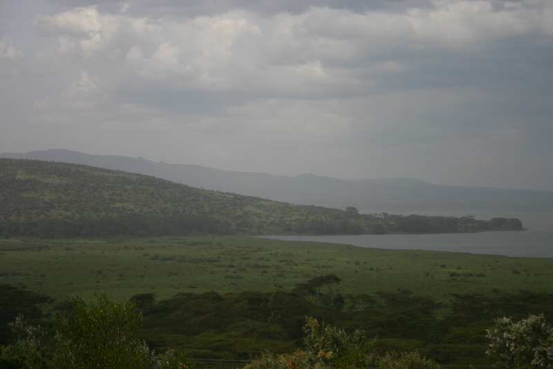 My first view of Lake Naivasha.