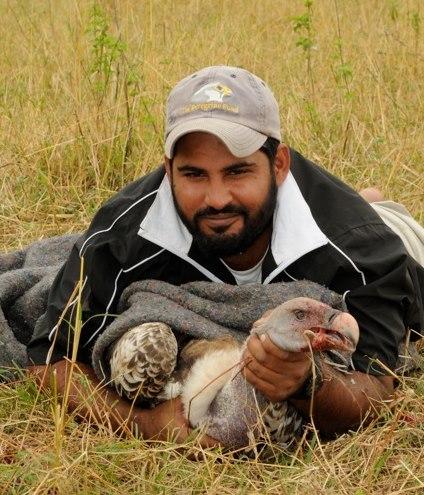 Munir's field assistant Shiv Kapila holding a Rüppell's Vulture.