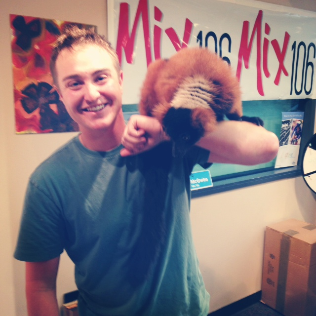 Brandy the Red-ruffed Lemur.