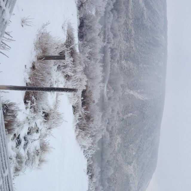 Winterbackporch