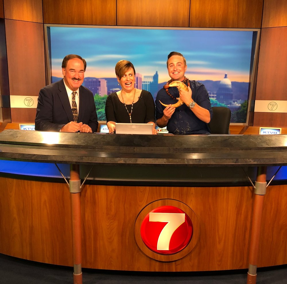 On the set of Boise's NBC Affiliate KTVB with Larry Gebert and Maggie O'Mara along with Topaz the Blue Tongued Skink and Hydro the Honduran Milk Snake.