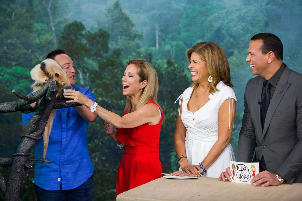 Kathie Lee feeding Gus the Tamandua. Photo Courtesy Nathan Congleton, Today Show Photographer.