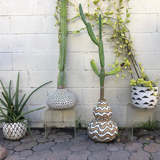💚 Beautiful pots and landscape by Pilar of @pattern_language