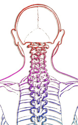 Cervical Spine Post-Operative Instructions