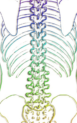 Lumbar Spine Post-Operative Instructions