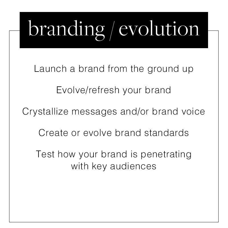 WhatWeDo_0001_branding-evolution.png