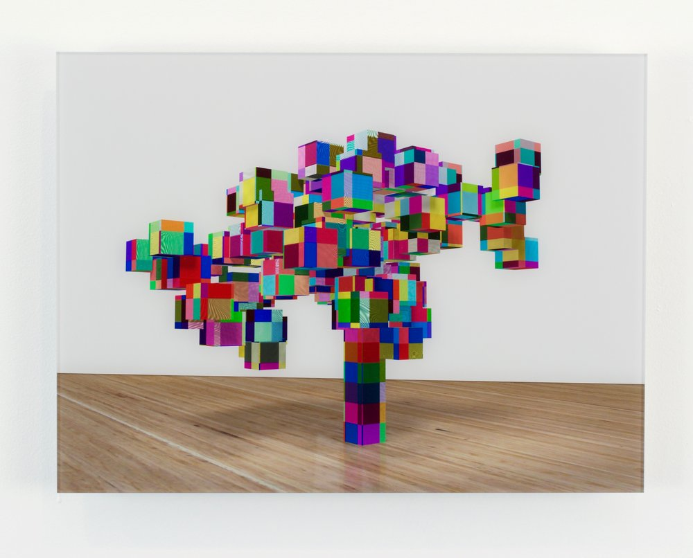 George Blaha, And They Call That a Tree (bonsai), 2013. Inkjet Print on Dibond, 10.5 x 14 inches.