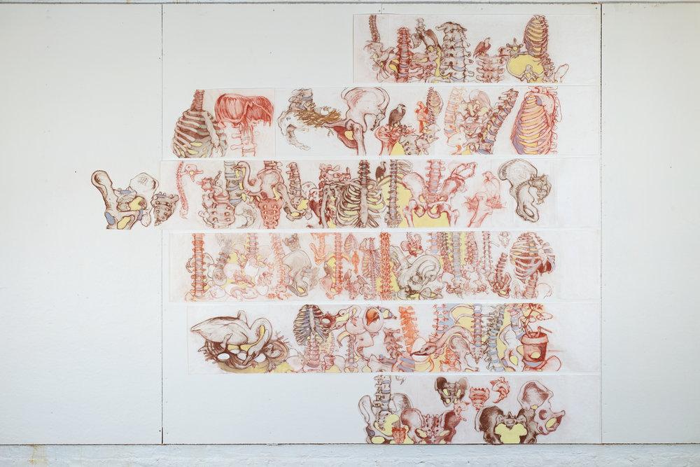 Elizabeth Riggle, Working Drawings (Sheet Music for Mabel), 2018. Conte crayon and gouache on paper, 96x108 inches