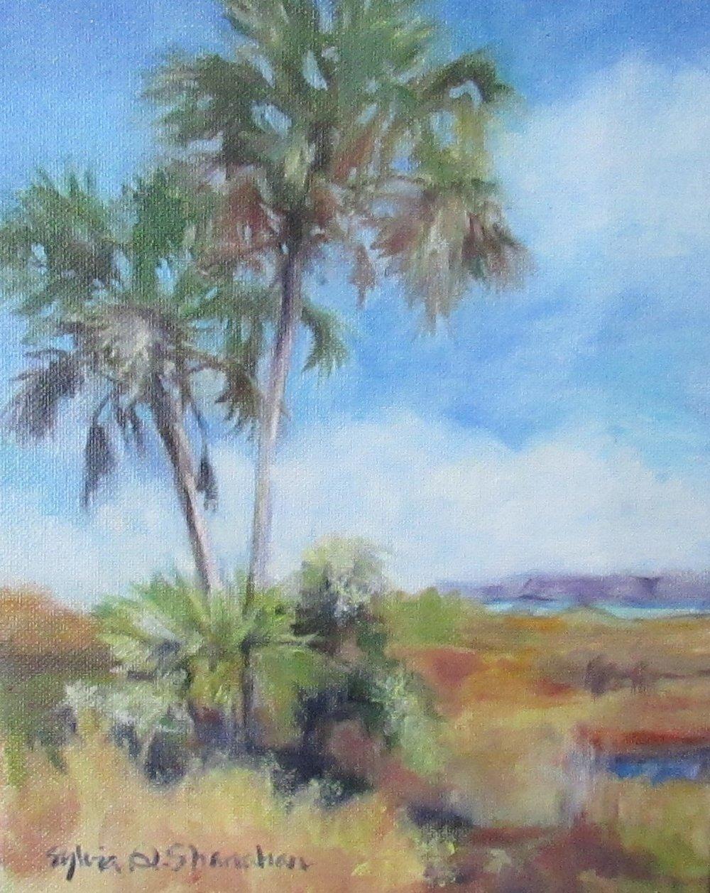 Boca Ciega Park by Sylvia Shanahan