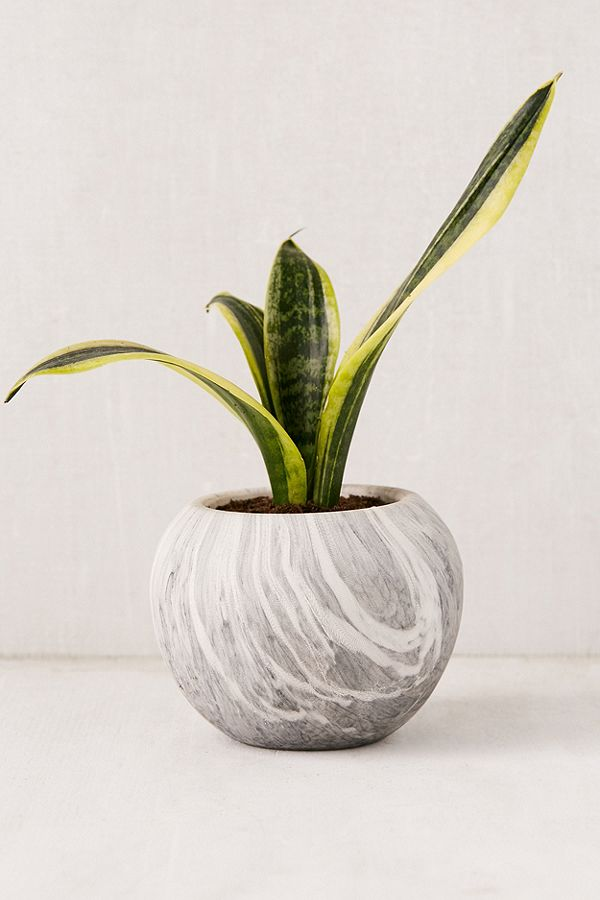 MARBLE BALL PLANTER