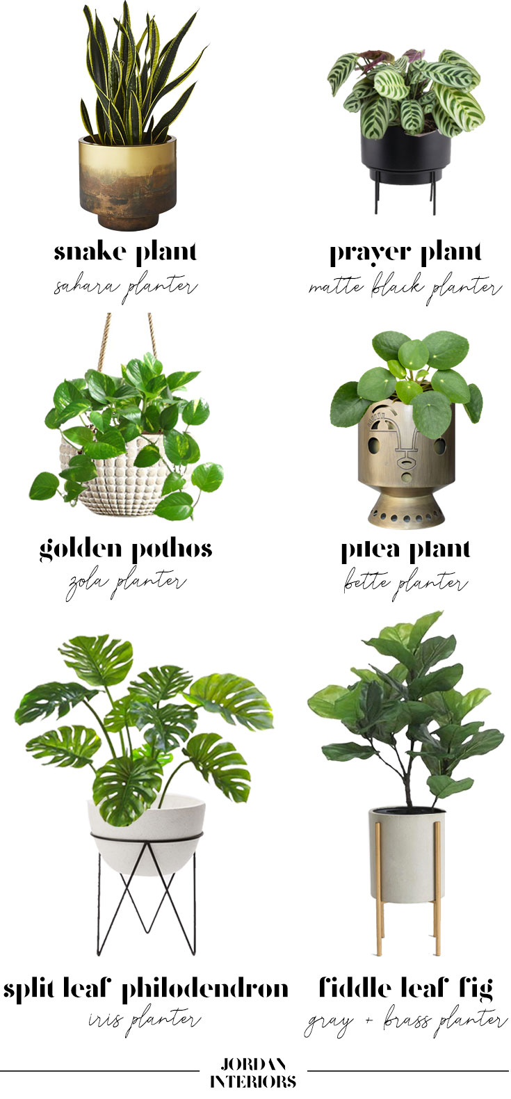 How To Indoor Plant Planter Guide Jordan Interiors