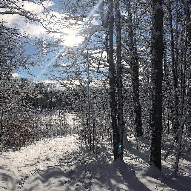 2019! I'm snowshoeing all day 😊. #snowshoeing #puremichigan #finallysomesnow