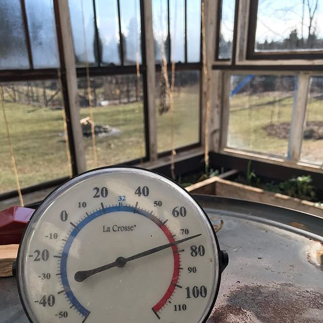 Todays greenhouse temps. The power of the sun ❤️ 29° outside 🥶  but still no snow 🤷♀️. #michiganwinter #greenhouse #wheresthesnow  #puremichiganwinter