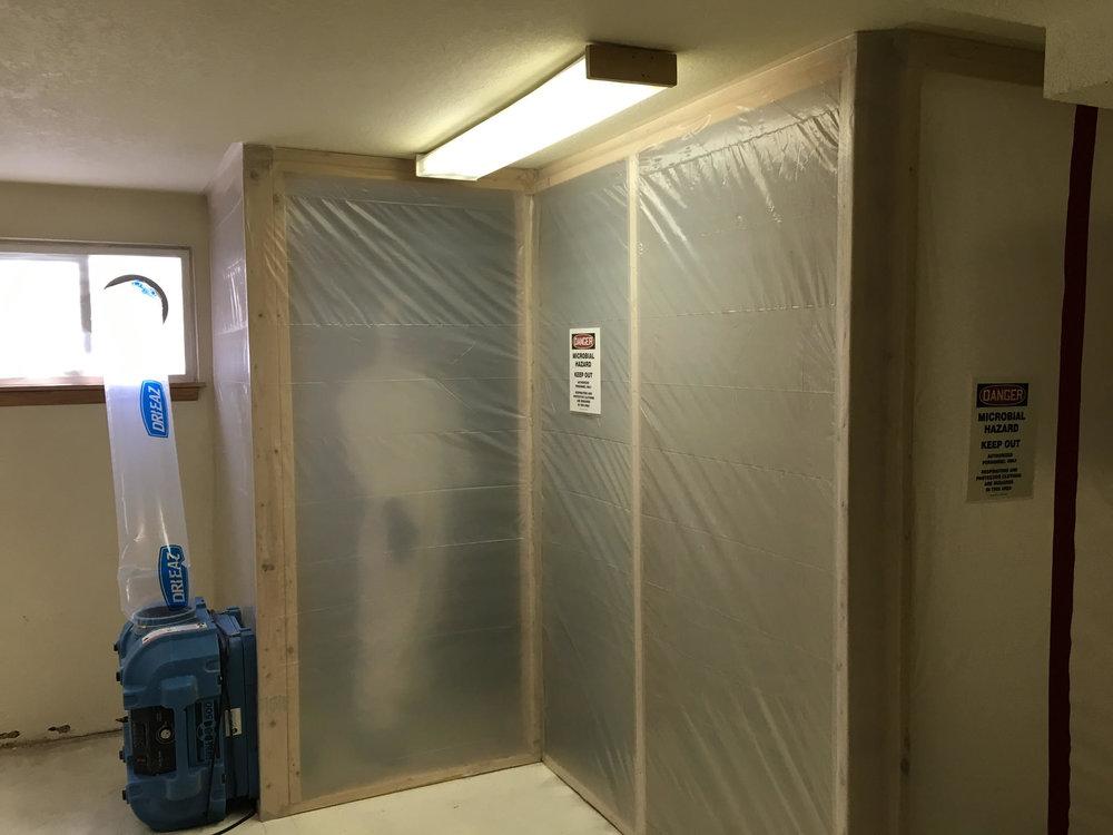 Mold Remediation Boise