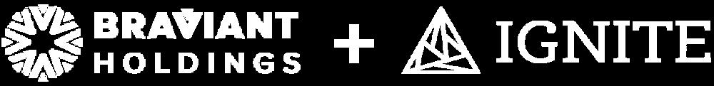 Media Toolkit Slide - Design Input - Braviant-06.png