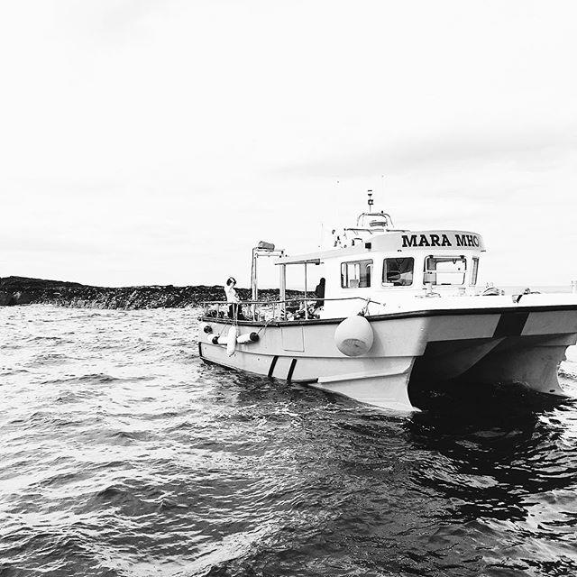 Mara Mohr #boat #sea #ocean #waves #farneislands #northumberland