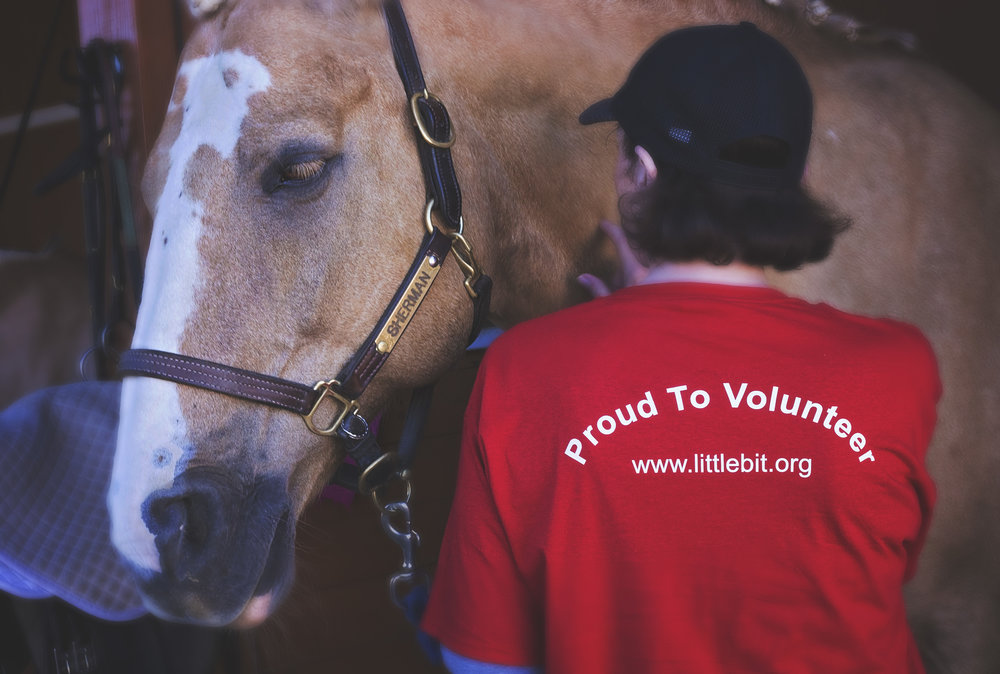 A person working with a tan horse named Sherman. The person is wearing a Little Bit volunteer t-shirt that says Proud to Volunteer.