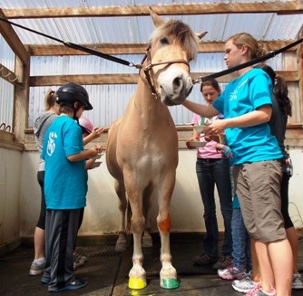Summer Camp attendees standing around and petting a tan horse.