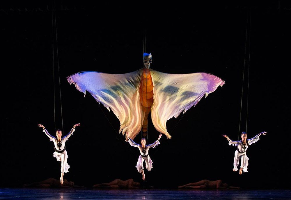 MOMIX (Medium).jpg