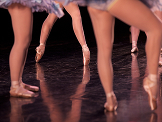 School of Alberta Ballet Scholarship Fund -