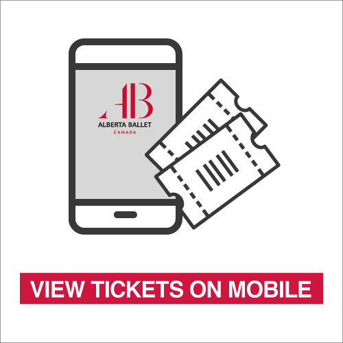 View-Tickets-on-Mobile-500x500.jpg